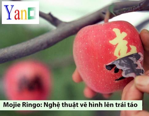 Nghệ Thuật Mojie Ringo - Vẽ hình lên trái táo