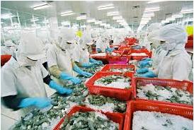 Tuyển dụng xuất khẩu lao động Tại Nhật Bản - Ngành Chế Biến Thủy Sản Tháng 11
