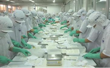 Tuyển Dụng XKLĐ Tại Nhật Bản - Ngành Chế Biến Thủy Sản